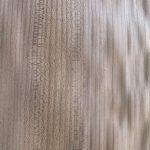 Elm Timber Veneer