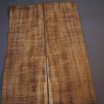 Blackwood veneer leaf
