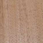Pacific Maple Timber Veneer
