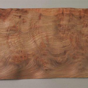 gorgeous elm burl veneer sheet